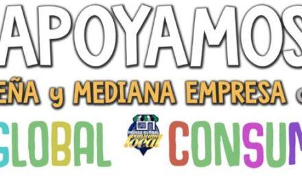 RESUMEN  AYUDAS a PYMES y AUTONOMOS Covid19